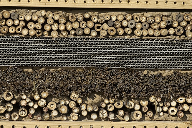 Fab abri abeille