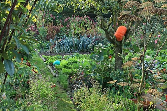 Pq jardin_environnement