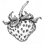 Illustration du profil de Raphaëlle
