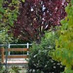 Logo du groupe Le jardinoscope