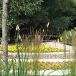 Logo du groupe Les jardins éphémères