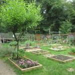 Logo du groupe Eco-jardin de la maison de l'environnement de sénart
