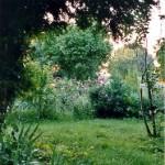 Logo du groupe Winnie's Garden