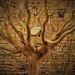 Logo du groupe Le jardin aux bois tordus