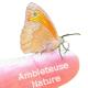 Logo du groupe Ambleteuse Nature